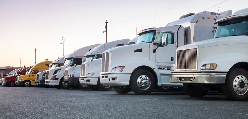 Fleet used for network benchmarking with Avail's policy compliance.