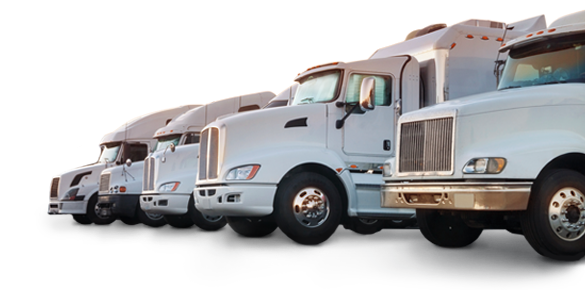 Avail Move Management moving trucks